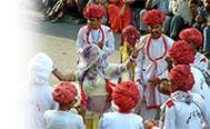 Jaipur Cultural Tour India